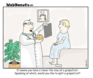 2008-05-13-The-Grapefruit-Doctor