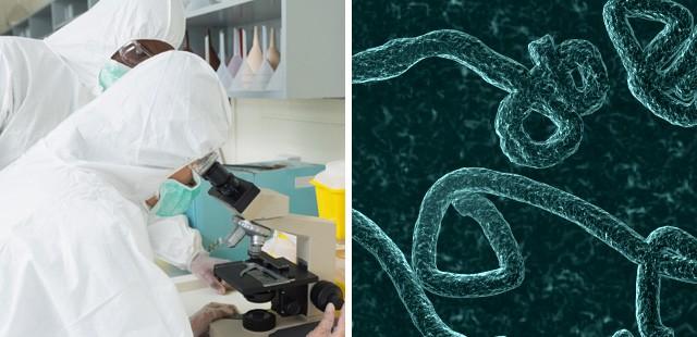 ebola labs
