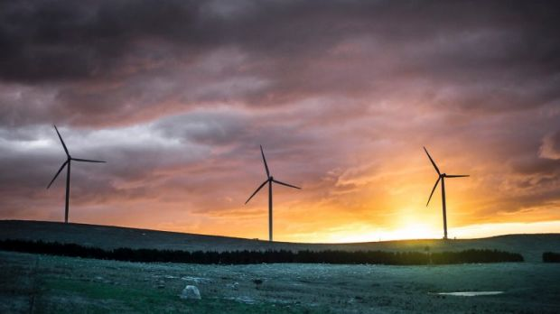 The peak health body's wind farm findings have been influenced by outside forces.