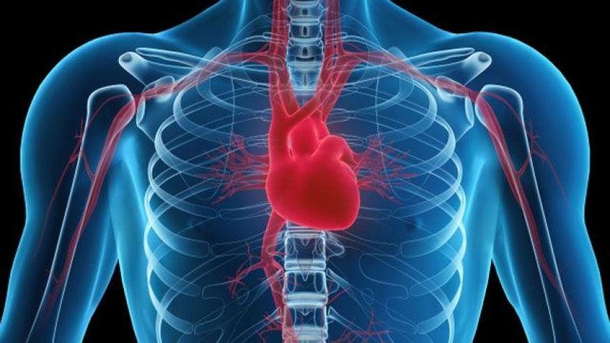 heart-health13